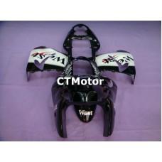 CTMotor 2000-2001 KAWASAKI ZX9R ZX-9R 9R FAIRING 69A West