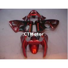 CTMotor 2000 2001 2002 KAWASAKI ZX6R ZX-6R 636 FAIRING 02A