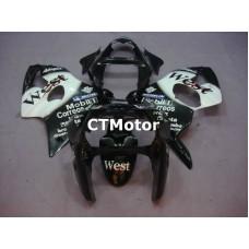 CTMotor 2000 2001 2002 KAWASAKI ZX6R ZX-6R 636 FAIRING 01A West