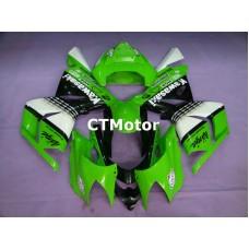 CTMotor 2004-2005 KAWASAKI ZX10R ZX-10R 10R FAIRING 62A Ninja