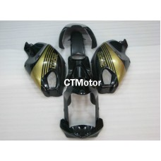 CTMotor DUCATI Monster 696 795 796 1100 1100S FAIRING AAJ